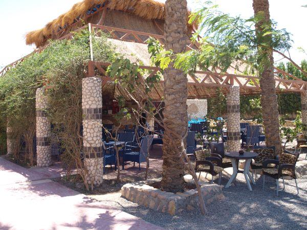Hurghada Grand Aquarium Cafe